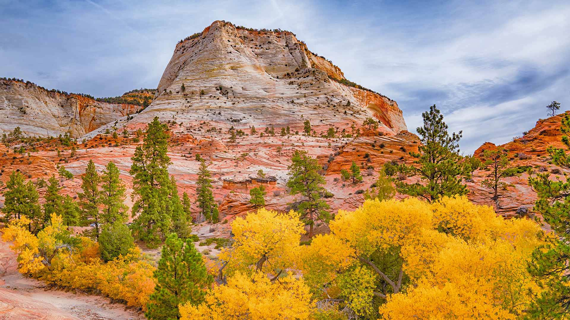Fall colors in Zion National Park, Utah (© pabradyphoto/Getty Images)